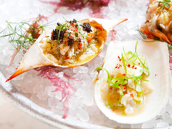 Small, Seductive New Seafood Plates at Maison Premiere
